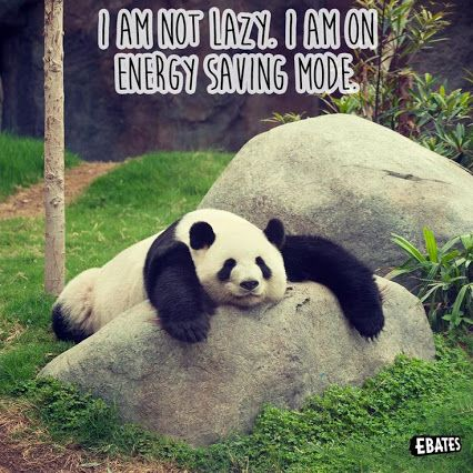 I'm not lazy. I am on energy saving mode!