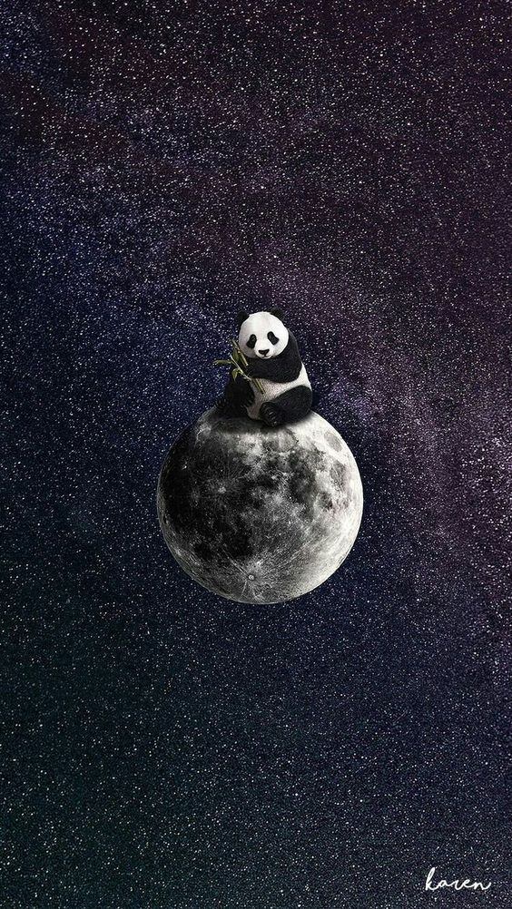Panda on the moon